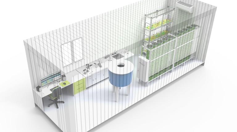 lab container microalgae